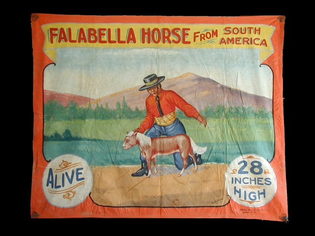 Falabella horse sideshow banner by Fred G. Johnson