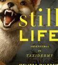 still-life-taxidermy-book