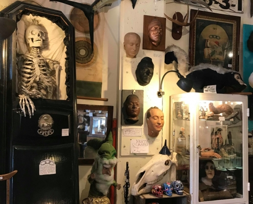 Woolly Mammoth oddities shop in Chicago