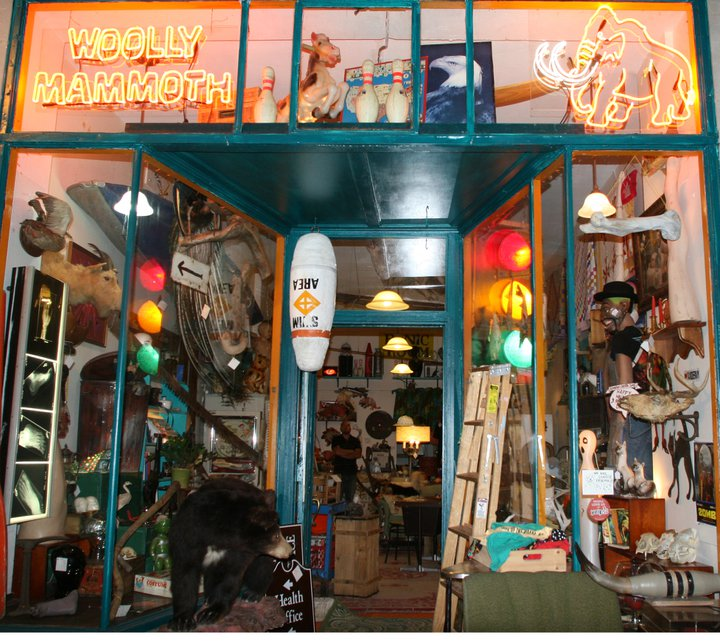 Woolly Mammoth antiques and oddities shop in Chicago, IL