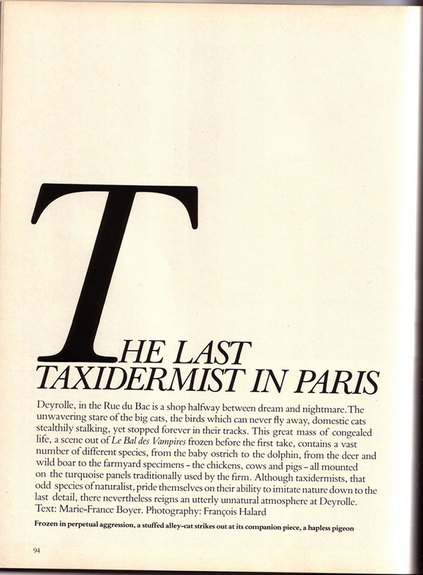 The Last Taxidermist in Paris article about Deyrolle
