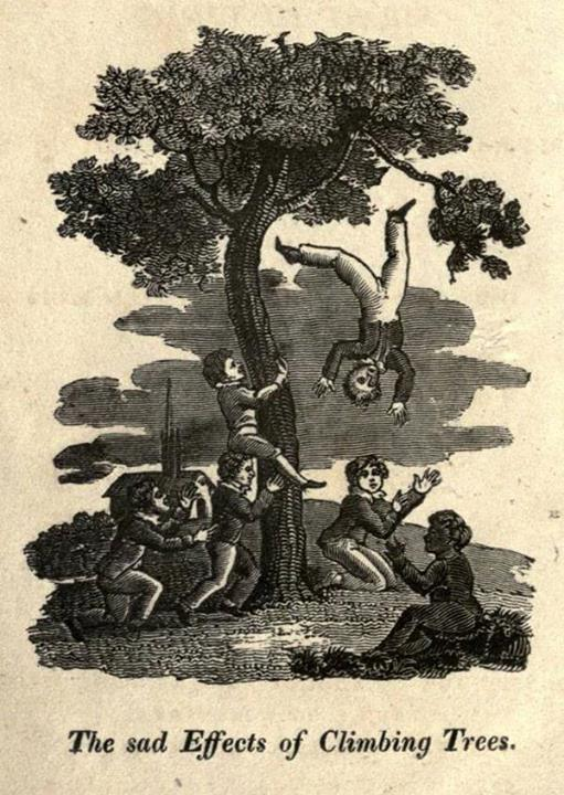 The Accidents of Youth - Why children shouldn't climb trees
