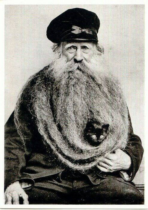 Vintage photo of a man with a cat in his beard