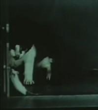 lsd-cat-government-film