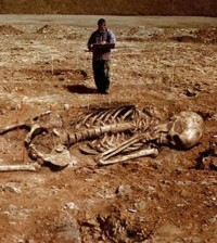 giant-skeletons-smithsonian