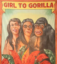 fred-johnson-girl-gorilla-banner