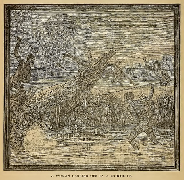 Woman carried off by a crocodile