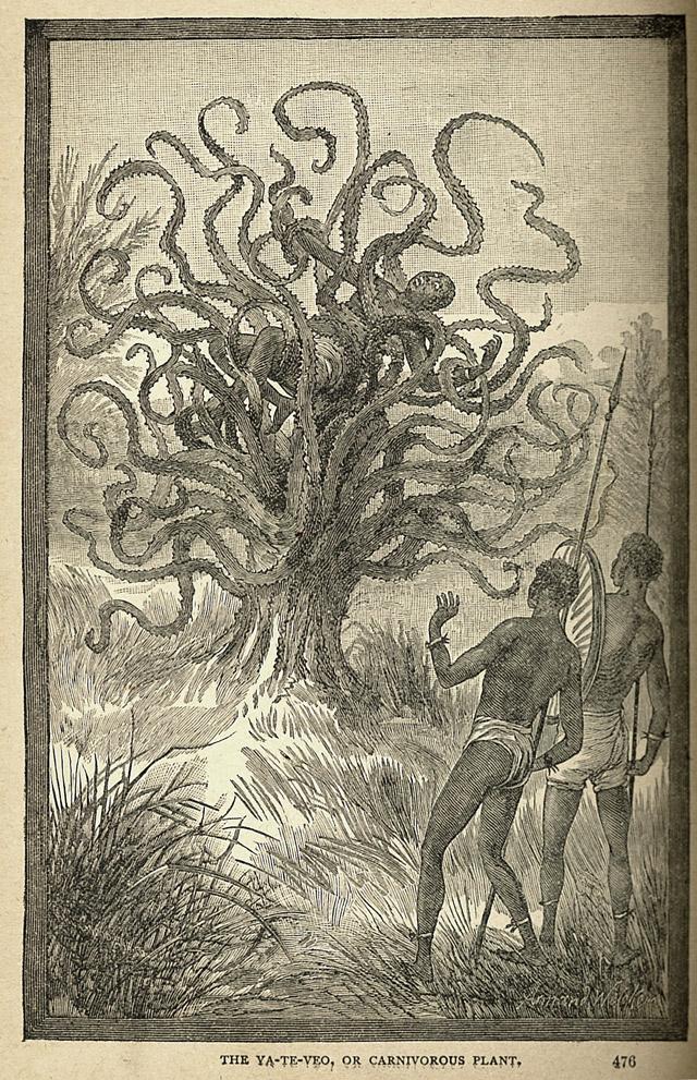 Man eaten by a carnivorous plant