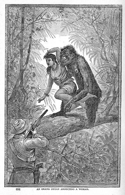 Orangutan abducting a woman