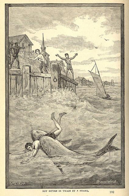 Boy biten by a shark