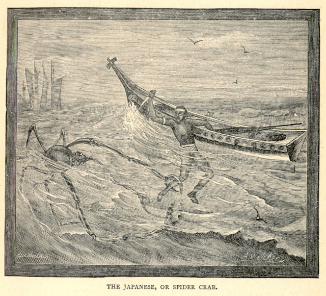 Man attacked by a killer spider crab in the 1889 book Land and Sea by J.W. Buel