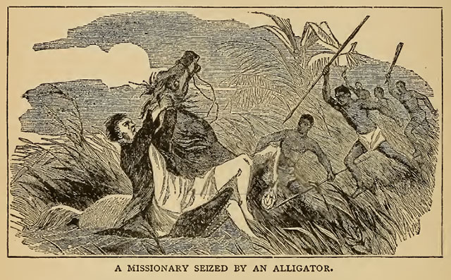 Missionary seized by alligator