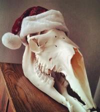 christmas-camel-skull-sm