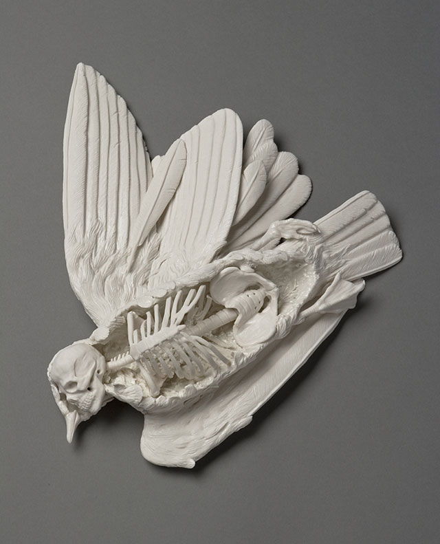 Icarus porcelain sculpture by Kate MacDowell