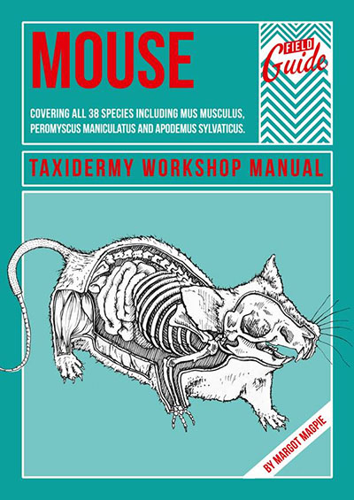 How to taxidermy a mouse book by Margot Magpie