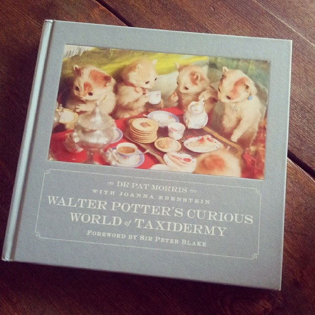 Walter Potter's Curious World of Taxidermy book