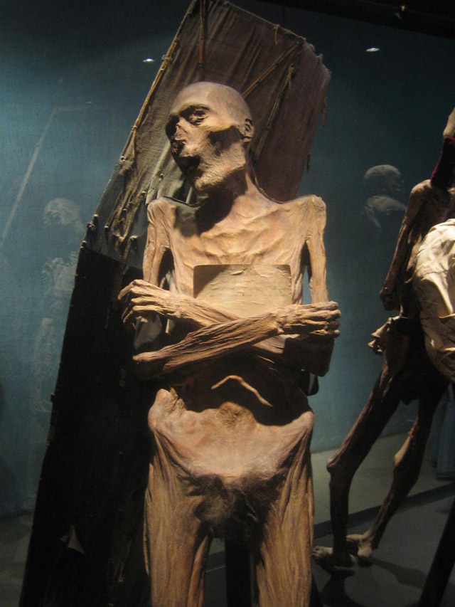 Mummified man holding a piece of paper at the El Museo De Las Momias in Guanajuato, Mexico