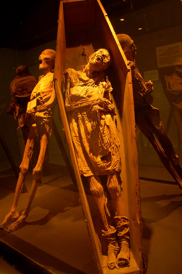 Mummified remains of a woman in a casket at the El Museo De Las Momias in Guanajuato, Mexico