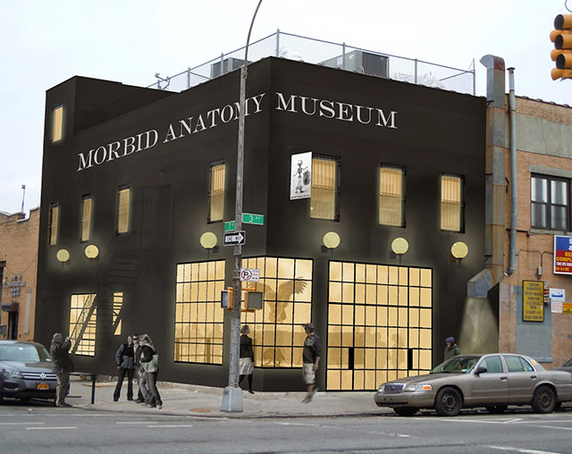 Morbid Anatomy Museum in Brooklyn
