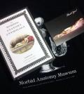 morbid-anatomy-sm
