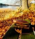weird-books-fall-reading