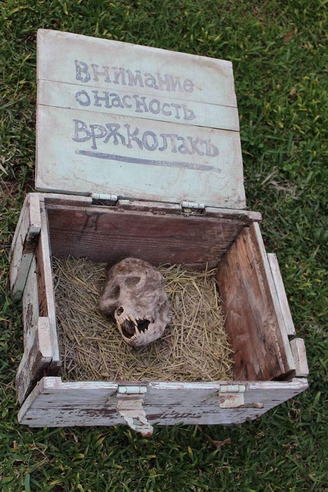 Werewolf skull found in a box
