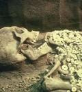 wisconsin-giant-skeletons