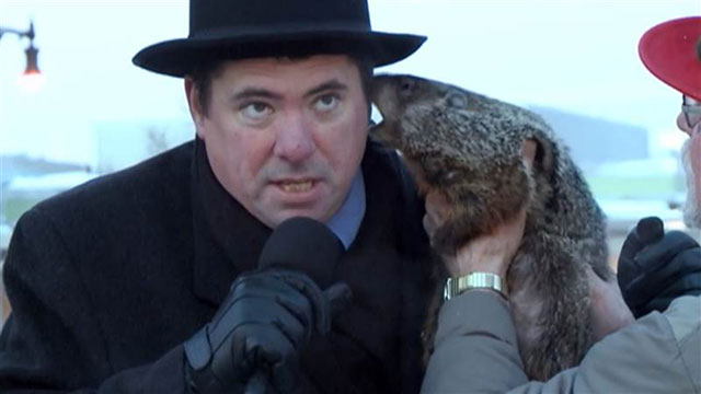 Wisconsin groundhog bites mayor