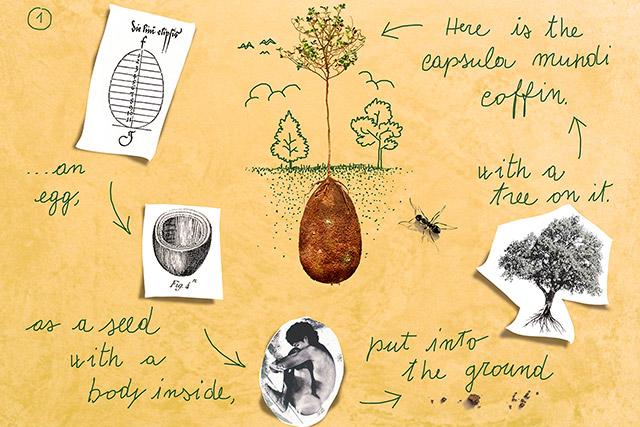 Capsula Mundi organic burial pods