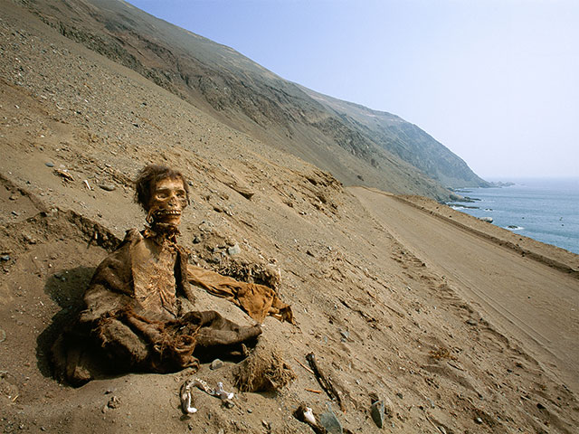 A Chinchorro mummy in the Atacama desert