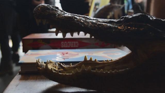 Morbid Anatomy Museum spring flea market