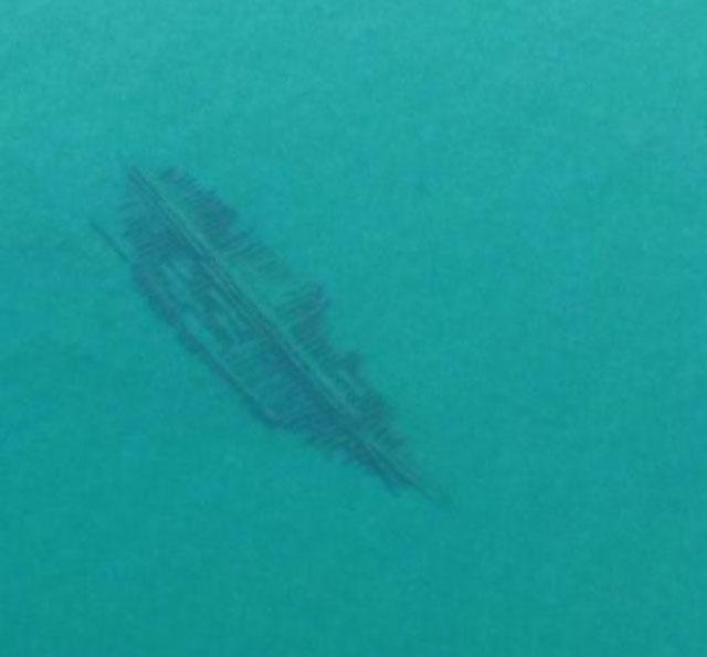 Unidentified shipwreck in Lake Michigan