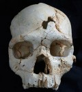 skull-murder-sm