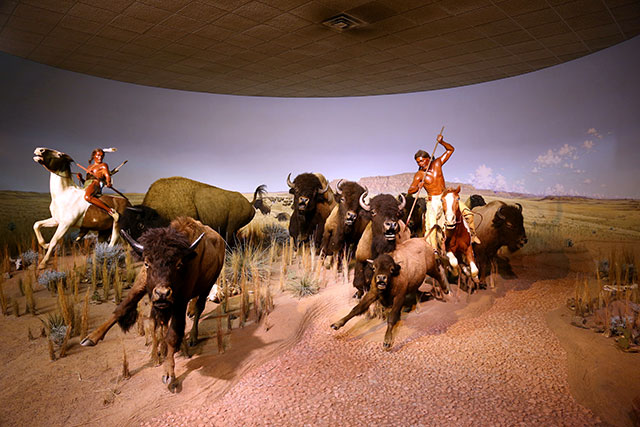 Bison hunt diorama at the Milwaukee Public Museum