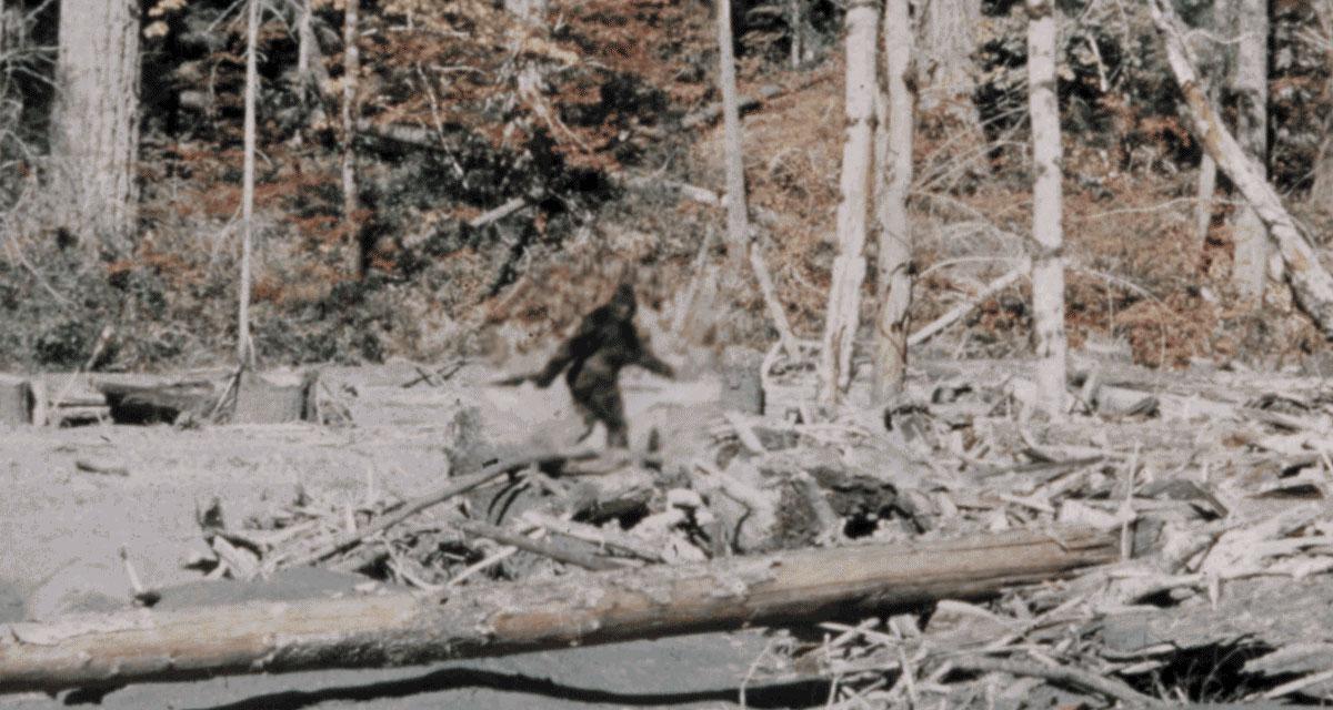 Patterson Gimlin Bigfoot film