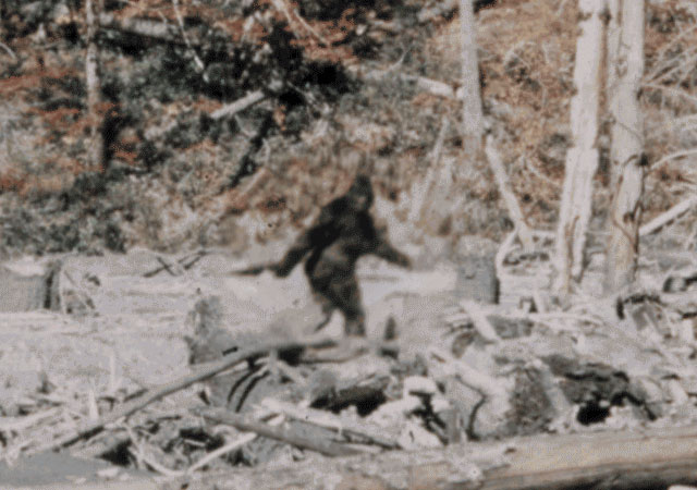 Bigfoot film
