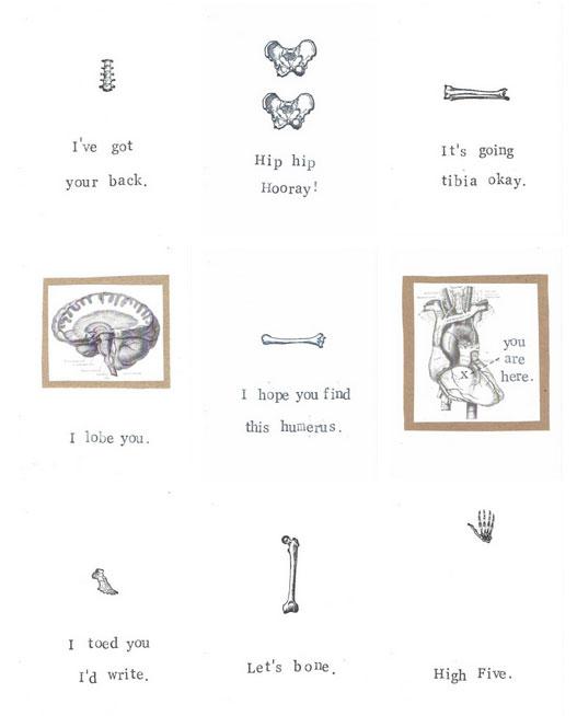 Anatomy greeting cards by Blue Specs Studio