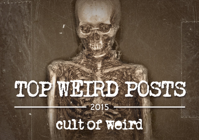 Most viewed weird news articles of 2015