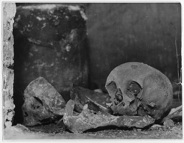 A skull in the Sheldon Chapel vault at Beoley may belong to William Shakespeare