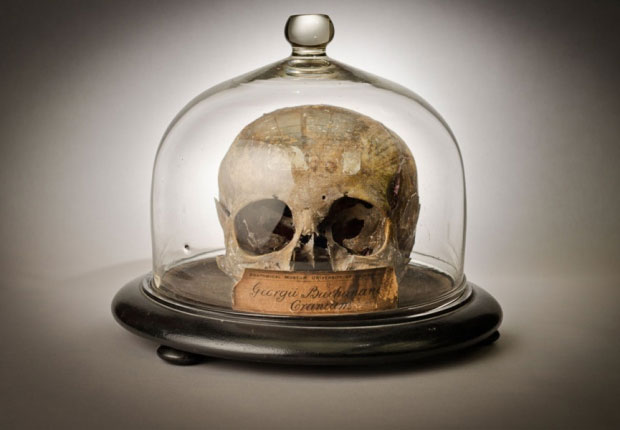 Explore macabre medical artifacts with Edinburgh Anatomical Museum's new app.