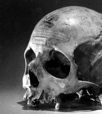 alexander-pearce-skull-sm