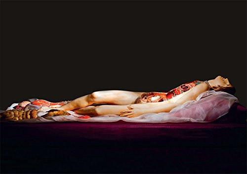 Anatomical Venus by Joanna Ebenstein