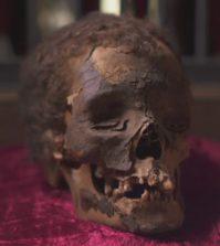 viktor-wynd-museum-mummy-head-sm