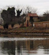venice-cemetery-island-sm