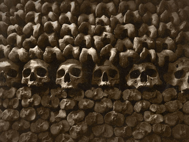 Lost in the Paris catacombs and other weird news