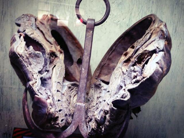 The mummified head of German serial killer Peter Kurten at Ripleys