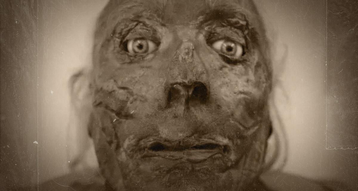 The mummified head of Jeremy Bentham