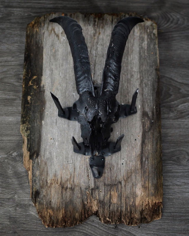 Little Philip black mounted goat skull by Bloodreligion