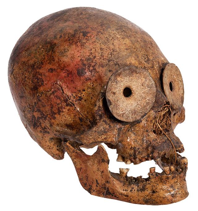 Pre-Columbian human skull