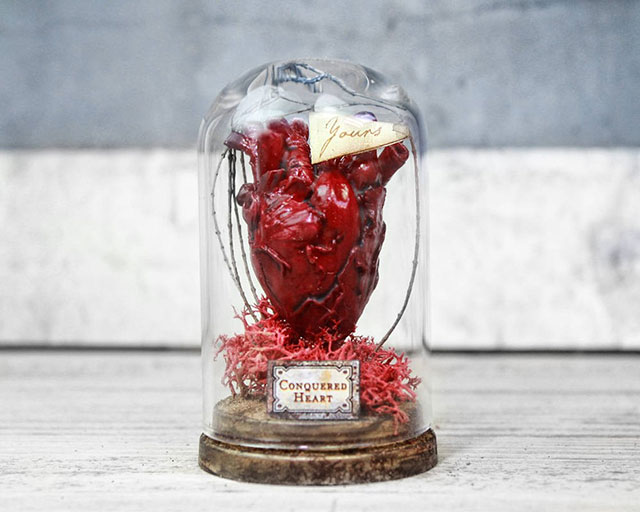 Anatomical heart in a bell jar